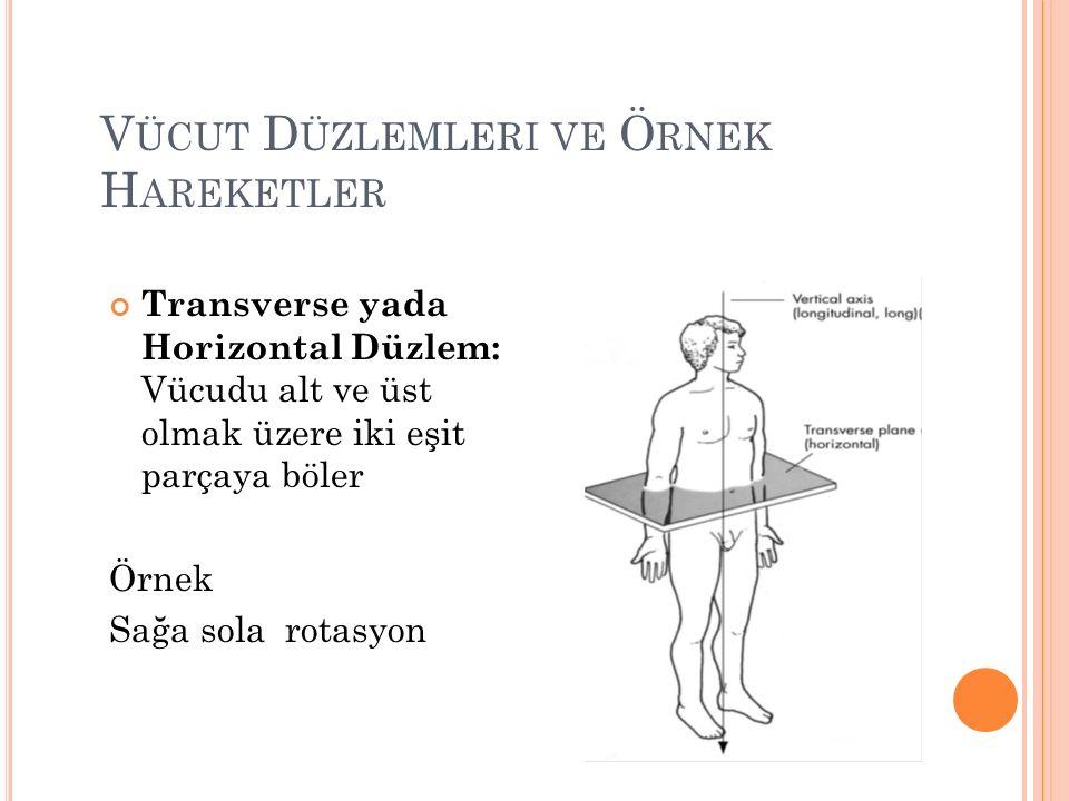V ÜCUT D ÜZLEMLERI VE Ö RNEK H AREKETLER Transverse yada Horizontal Düzlem: Vücudu alt ve üst olmak üzere iki eşit parçaya böler Örnek Sağa sola rotasyon