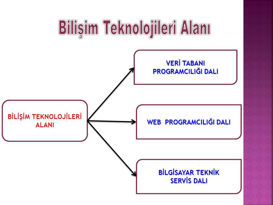Bilgisayar bilimi; bilgisayar sistemlerinin ve yazılımların tasarlanması, geliştirilmesi ve bakımını içerir.
