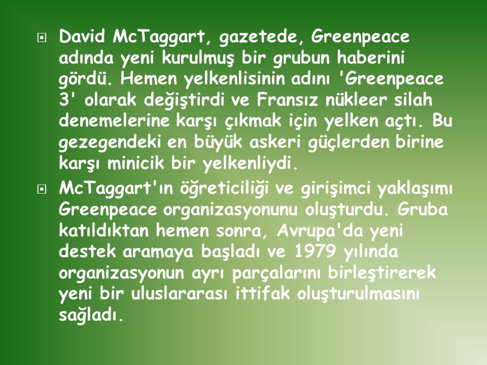  David McTaggart, gazetede, Greenpeace adında yeni kurulmuş bir grubun haberini gördü. Hemen yelkenlisinin adını 'Greenpeace 3' olarak değiştirdi ve