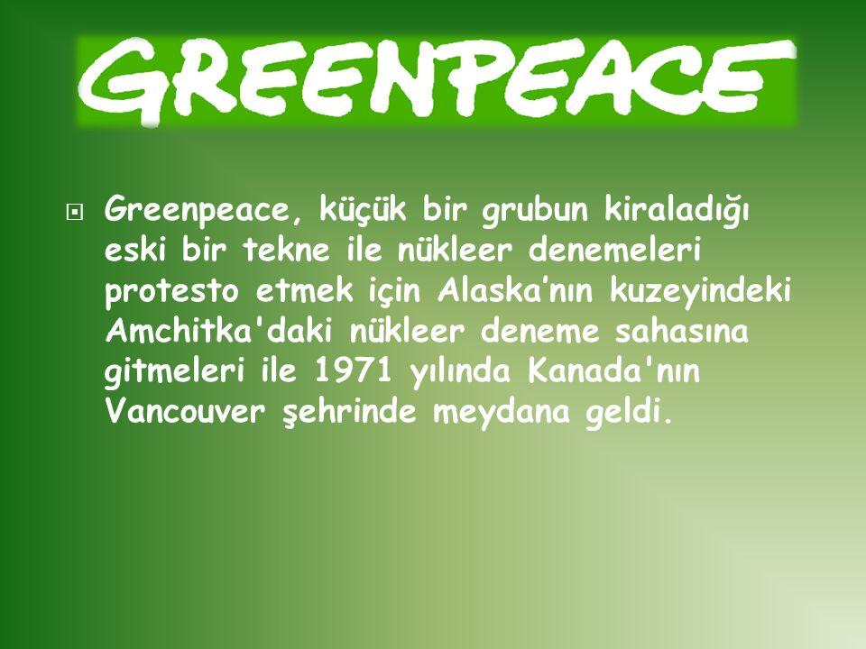  Greenpeace, küçük bir grubun kiraladığı eski bir tekne ile nükleer denemeleri protesto etmek için Alaska'nın kuzeyindeki Amchitka'daki nükleer denem