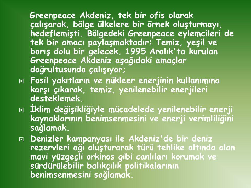 Greenpeace Akdeniz, tek bir ofis olarak çalışarak, bölge ülkelere bir örnek oluşturmayı, hedeflemişti. Bölgedeki Greenpeace eylemcileri de tek bir ama