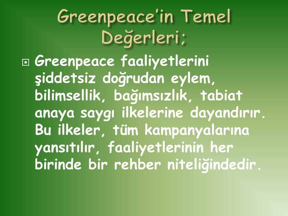  Greenpeace faaliyetlerini şiddetsiz doğrudan eylem, bilimsellik, bağımsızlık, tabiat anaya saygı ilkelerine dayandırır. Bu ilkeler, tüm kampanyaları