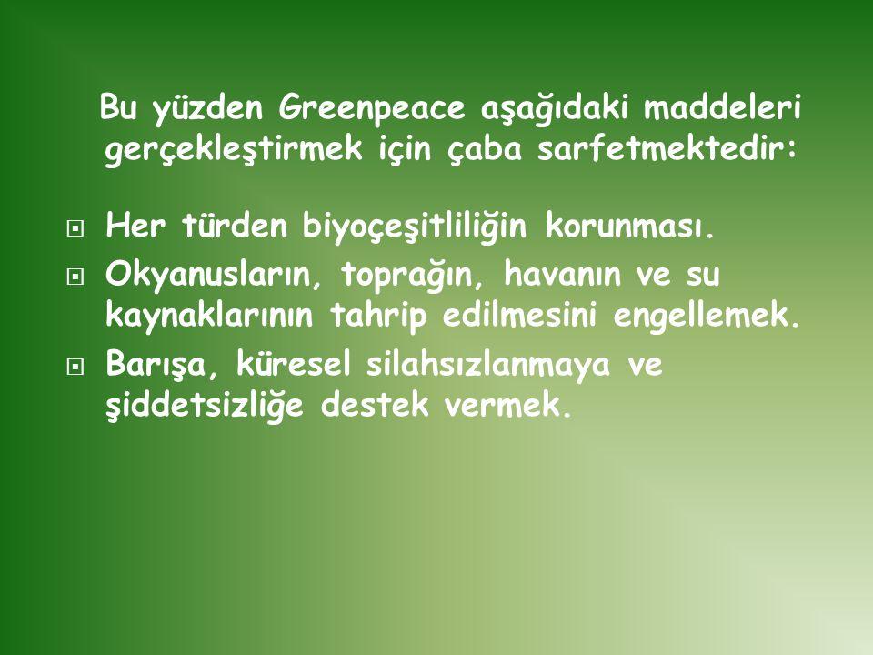 Bu yüzden Greenpeace aşağıdaki maddeleri gerçekleştirmek için çaba sarfetmektedir:  Her türden biyoçeşitliliğin korunması.  Okyanusların, toprağın,