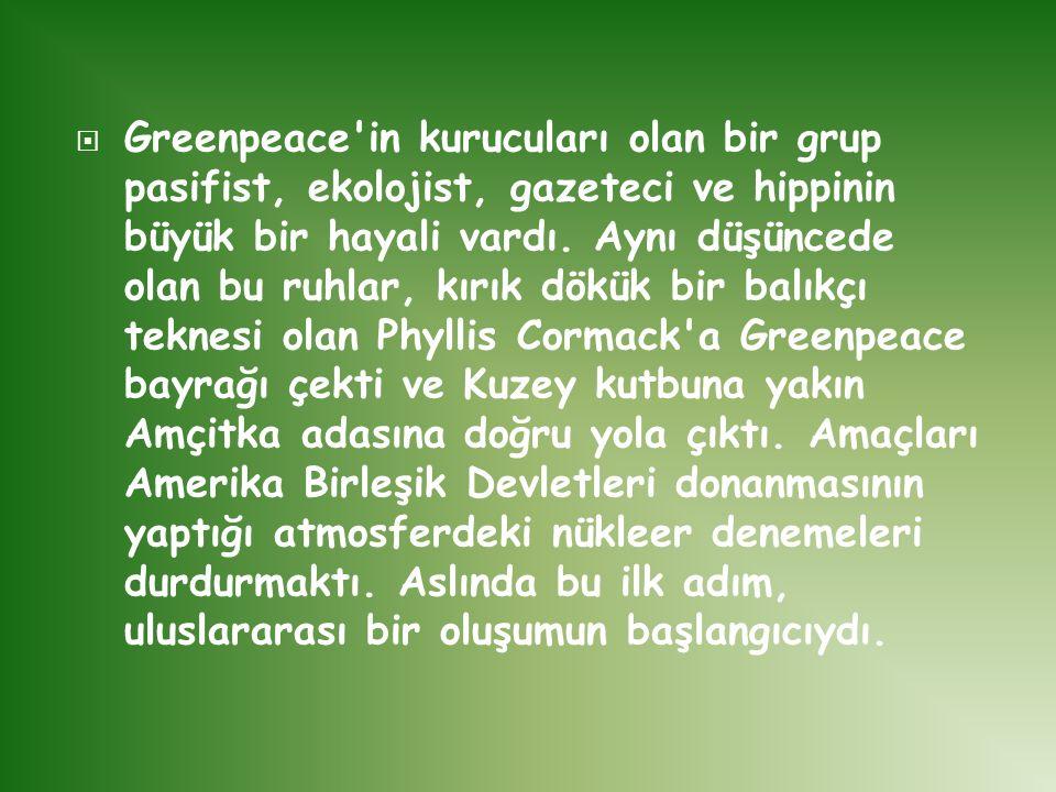  Greenpeace'in kurucuları olan bir grup pasifist, ekolojist, gazeteci ve hippinin büyük bir hayali vardı. Aynı düşüncede olan bu ruhlar, kırık dökük