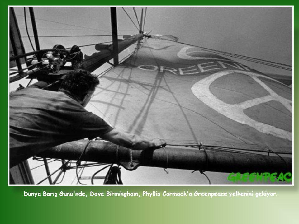 Dünya Barış Günü'nde, Dave Birmingham, Phyllis Cormack'a Greenpeace yelkenini çekiyor.
