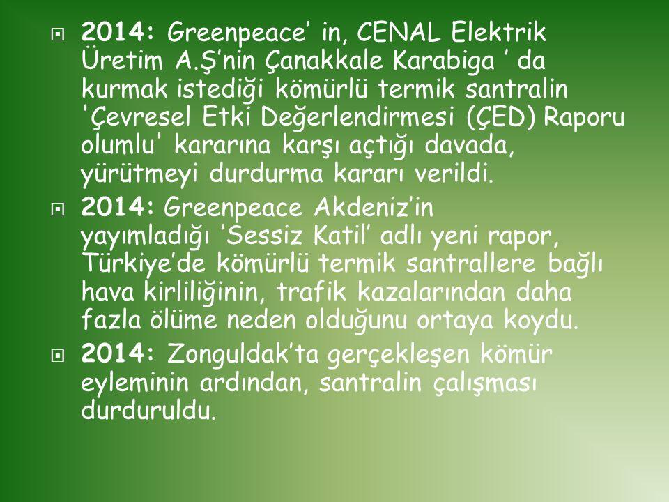  2014: Greenpeace' in, CENAL Elektrik Üretim A.Ş'nin Çanakkale Karabiga ' da kurmak istediği kömürlü termik santralin 'Çevresel Etki Değerlendirmesi
