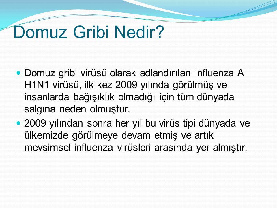 Domuz Gribi Nedir? Domuz gribi virüsü olarak adlandırılan influenza A H1N1 virüsü, ilk kez 2009 yılında görülmüş ve insanlarda bağışıklık olmadığı içi