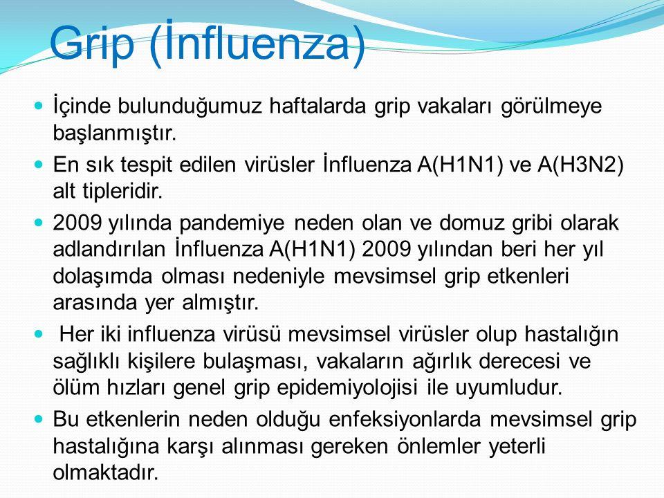 Grip (İnfluenza) İçinde bulunduğumuz haftalarda grip vakaları görülmeye başlanmıştır. En sık tespit edilen virüsler İnfluenza A(H1N1) ve A(H3N2) alt t