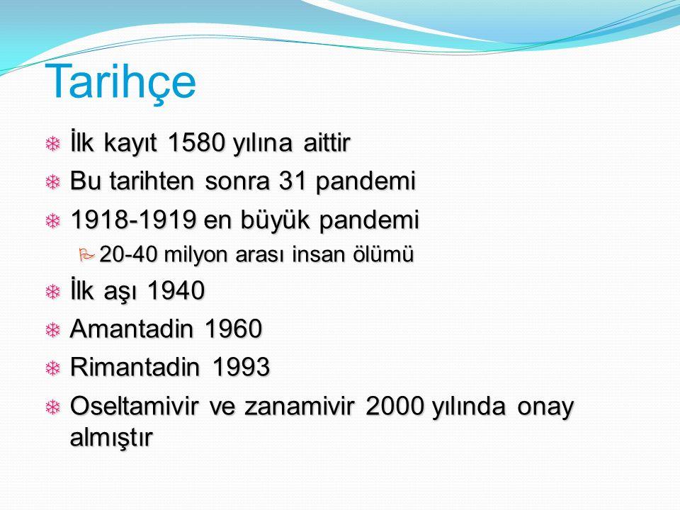 Tarihçe  İlk kayıt 1580 yılına aittir  Bu tarihten sonra 31 pandemi  1918-1919 en büyük pandemi  20-40 milyon arası insan ölümü  İlk aşı 1940  A