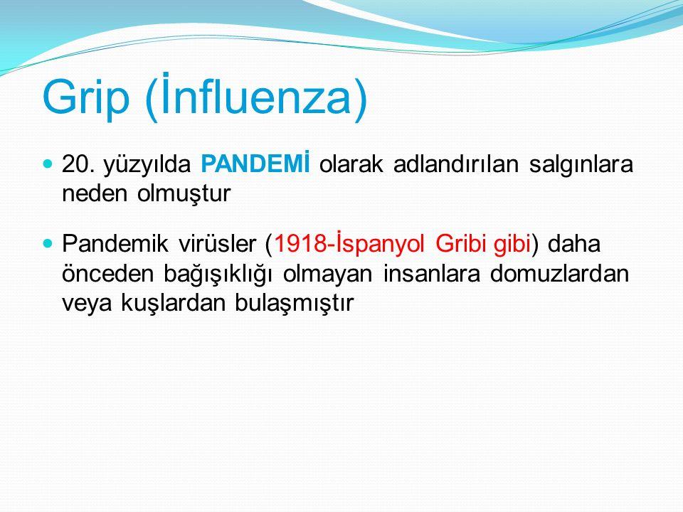 412 MÖ 1918 1933 1957 1968 Asya gribi H2N2 Hong Kong gribi H3N2 İnfluenza virusun izole edilmesi İspanya gribi H1N1 Hippocrates 1173-1174 İnfluenza benzeri epidemilerin bildirilmesi Potter CW.