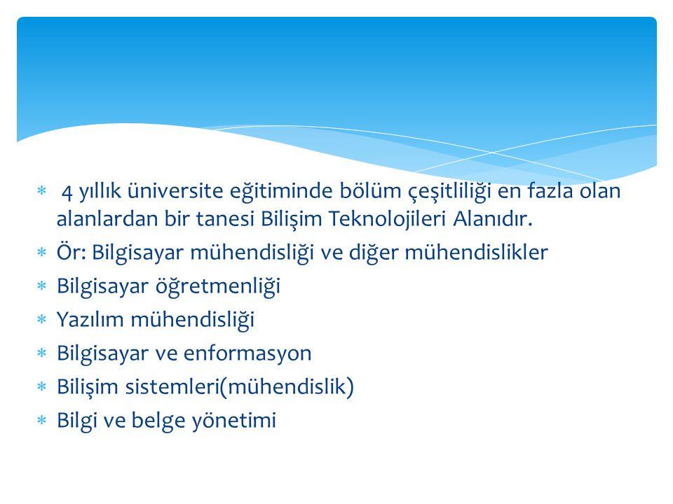  4 yıllık üniversite eğitiminde bölüm çeşitliliği en fazla olan alanlardan bir tanesi Bilişim Teknolojileri Alanıdır.  Ör: Bilgisayar mühendisliği v