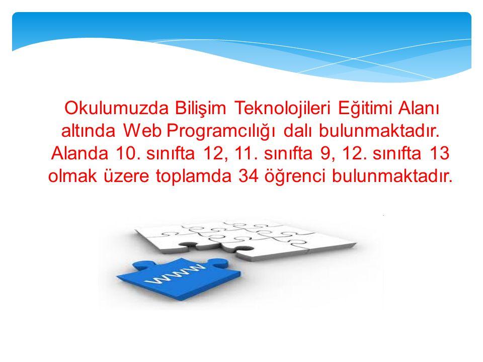 Okulumuzda Bilişim Teknolojileri Eğitimi Alanı altında Web Programcılığı dalı bulunmaktadır. Alanda 10. sınıfta 12, 11. sınıfta 9, 12. sınıfta 13 olma