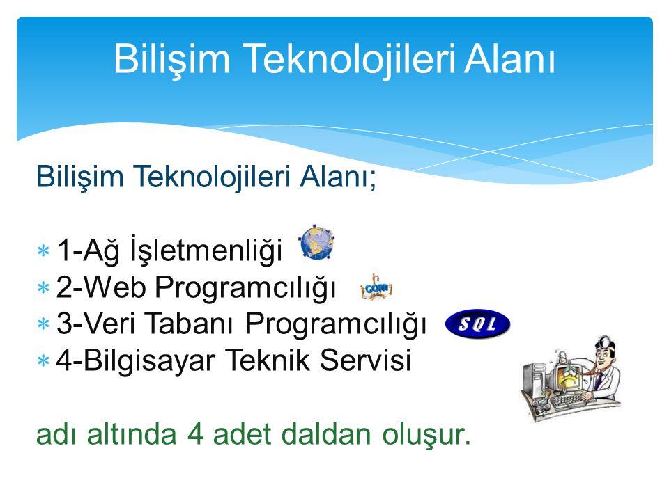 Bilişim Teknolojileri Alanı;  1-Ağ İşletmenliği  2-Web Programcılığı  3-Veri Tabanı Programcılığı  4-Bilgisayar Teknik Servisi adı altında 4 adet