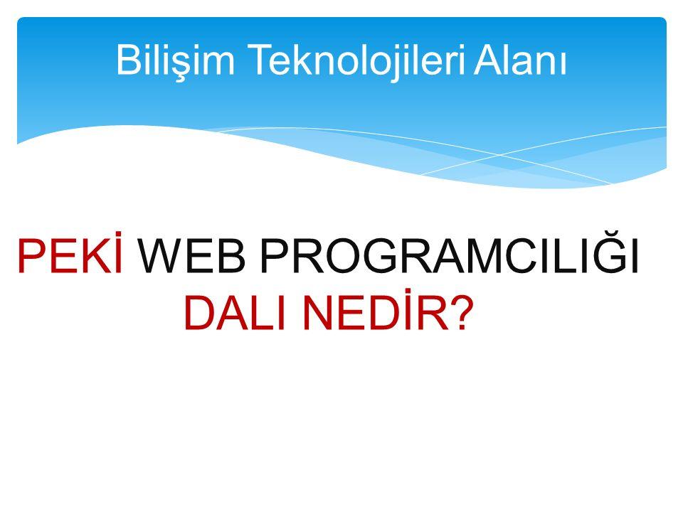 PEKİ WEB PROGRAMCILIĞI DALI NEDİR? Bilişim Teknolojileri Alanı