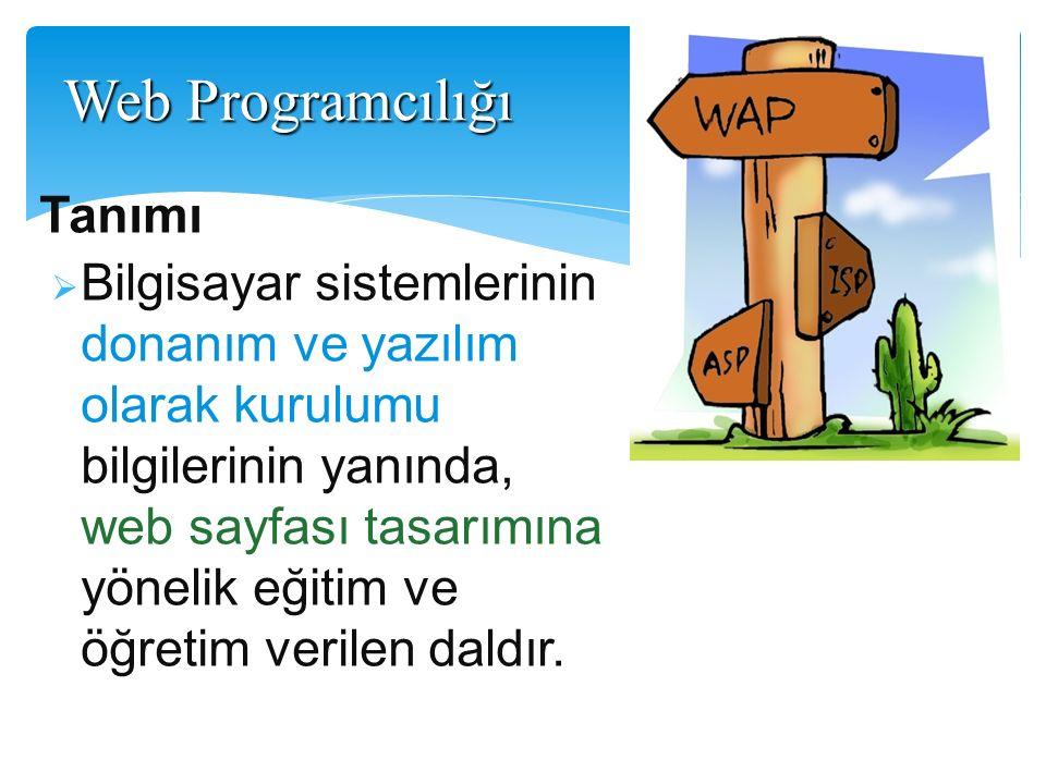 Tanımı  Bilgisayar sistemlerinin donanım ve yazılım olarak kurulumu bilgilerinin yanında, web sayfası tasarımına yönelik eğitim ve öğretim verilen da