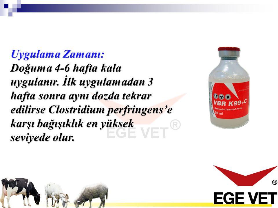 Aynı sığır, koyun ve keçilere doğum öncesi tek doz uygulama yeterlidir.