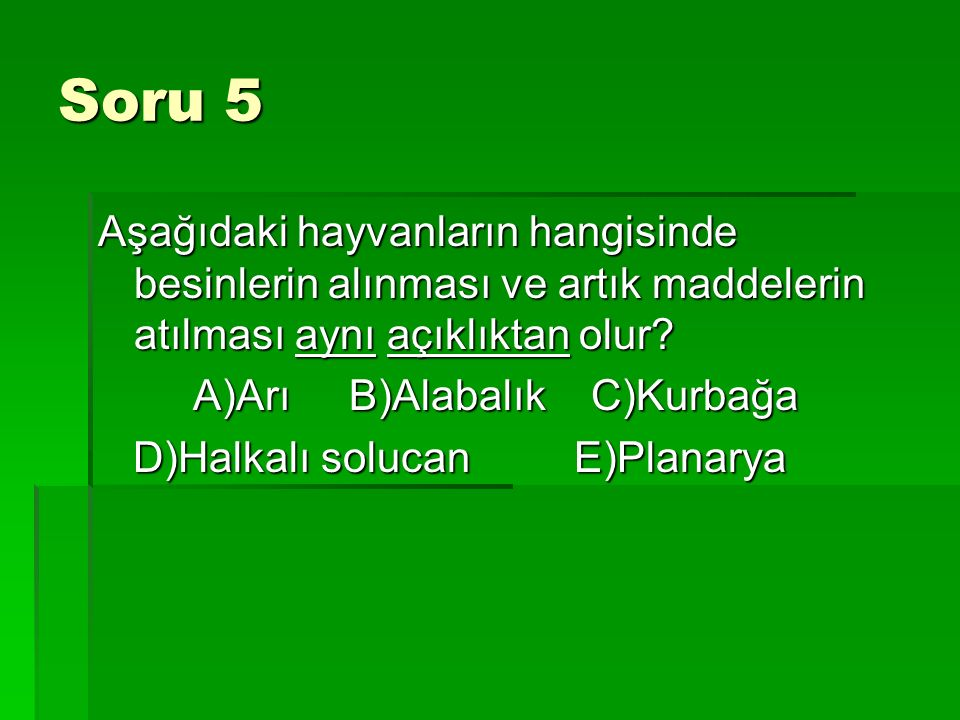 Soru 5 Aşağıdaki hayvanların hangisinde besinlerin alınması ve artık maddelerin atılması aynı açıklıktan olur? A)Arı B)Alabalık C)Kurbağa A)Arı B)Alab
