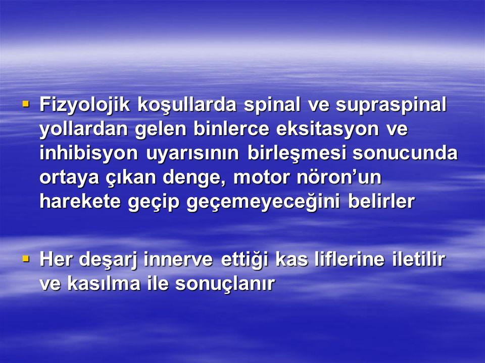 Fizyolojik koşullarda spinal ve supraspinal yollardan gelen binlerce eksitasyon ve inhibisyon uyarısının birleşmesi sonucunda ortaya çıkan denge, moto