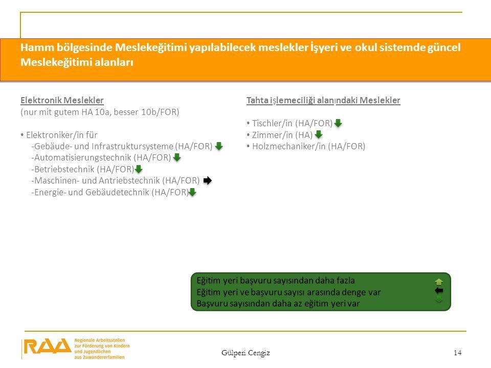 Gülperi Cengiz 14 Elektronik Meslekler (nur mit gutem HA 10a, besser 10b/FOR) Elektroniker/in für -Gebäude- und Infrastruktursysteme (HA/FOR) -Automat