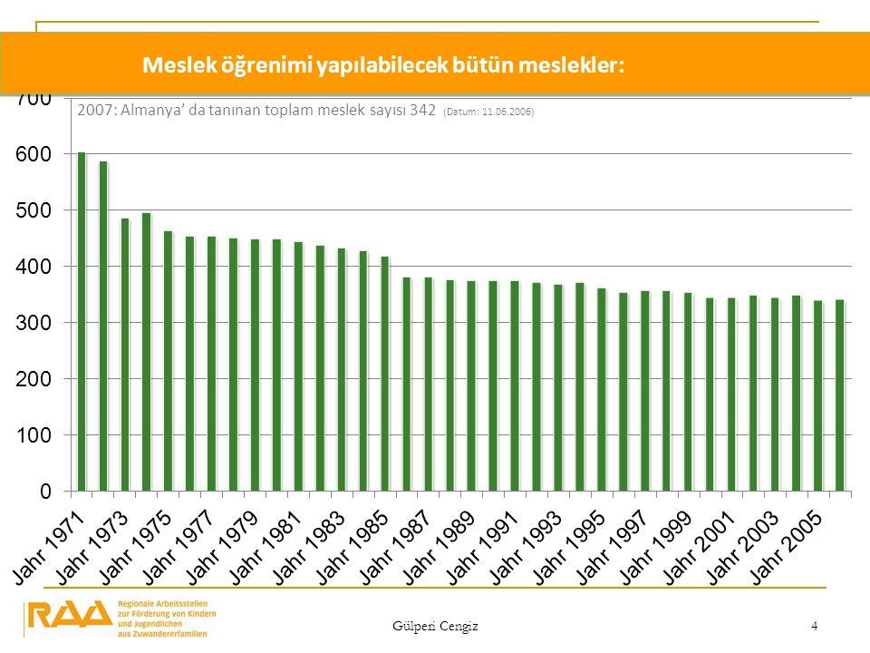 Gülperi Cengiz 4 Meslek öğrenimi yapılabilecek bütün meslekler: 2007: Almanya da tanınan toplam meslek sayısı 342 (Datum: 11.06.2006)