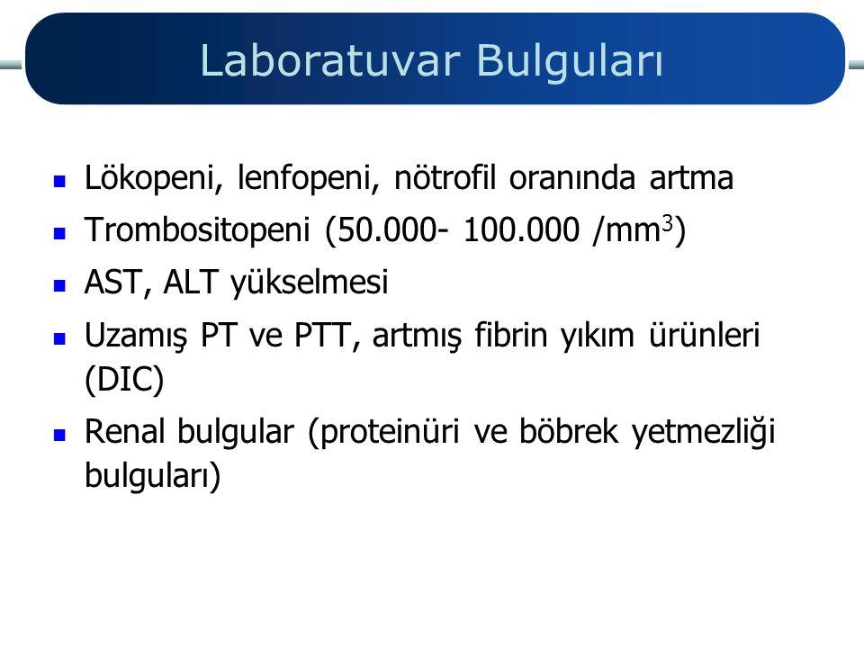 Laboratuvar Bulguları Lökopeni, lenfopeni, nötrofil oranında artma Trombositopeni (50.000- 100.000 /mm 3 ) AST, ALT yükselmesi Uzamış PT ve PTT, artmı