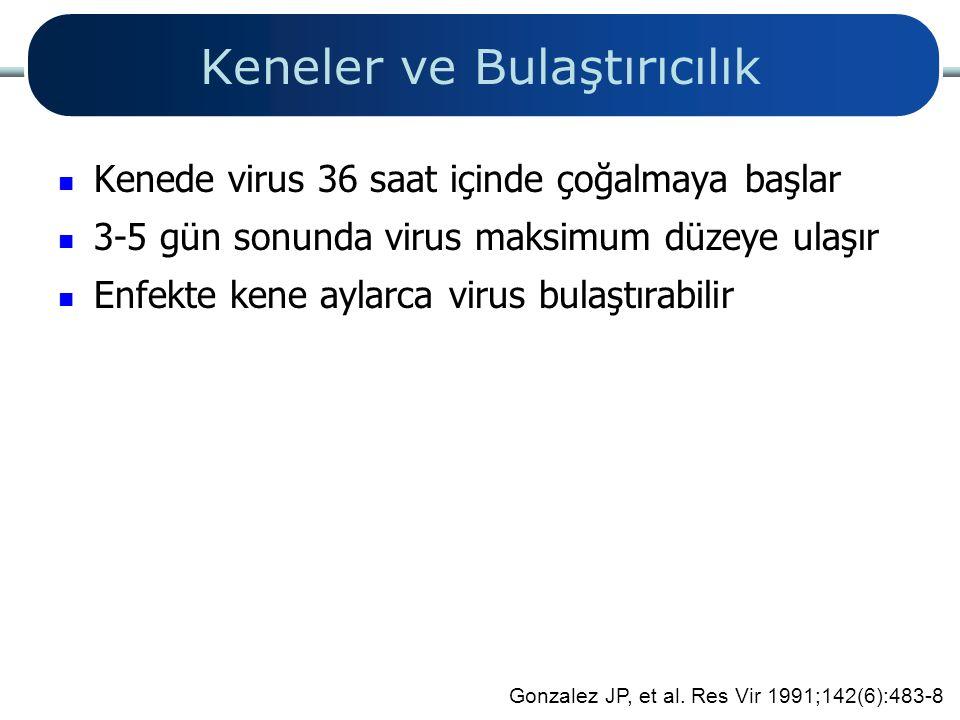 Keneler ve Bulaştırıcılık Kenede virus 36 saat içinde çoğalmaya başlar 3-5 gün sonunda virus maksimum düzeye ulaşır Enfekte kene aylarca virus bulaştı