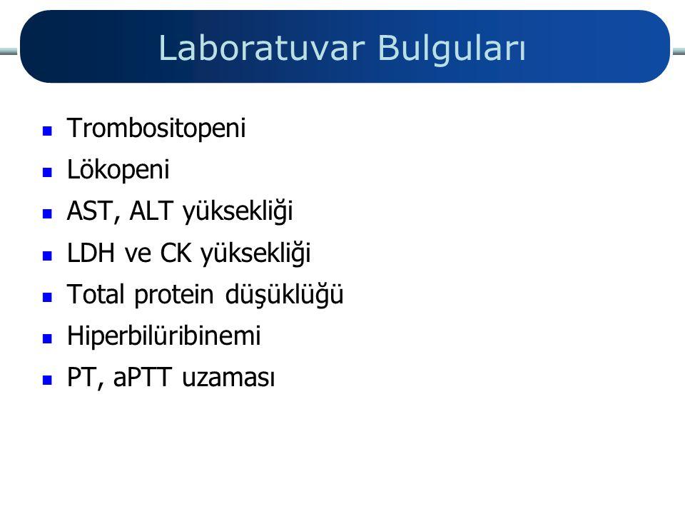 Laboratuvar Bulguları Trombositopeni Lökopeni AST, ALT yüksekliği LDH ve CK yüksekliği Total protein düşüklüğü Hiperbil ü r i binemi PT, aPTT uzaması