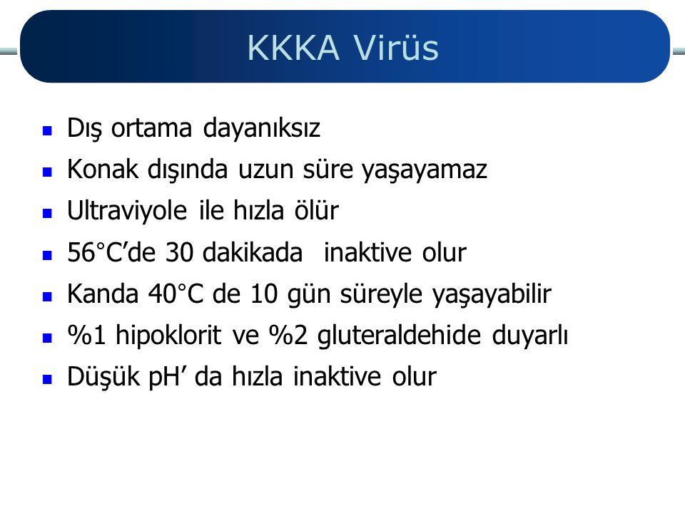 KKKA Virüs Dış ortama dayanıksız Konak dışında uzun süre yaşayamaz Ultraviyole ile hızla ölür 56°C'de 30 dakikada inaktive olur Kanda 40°C de 10 gün s