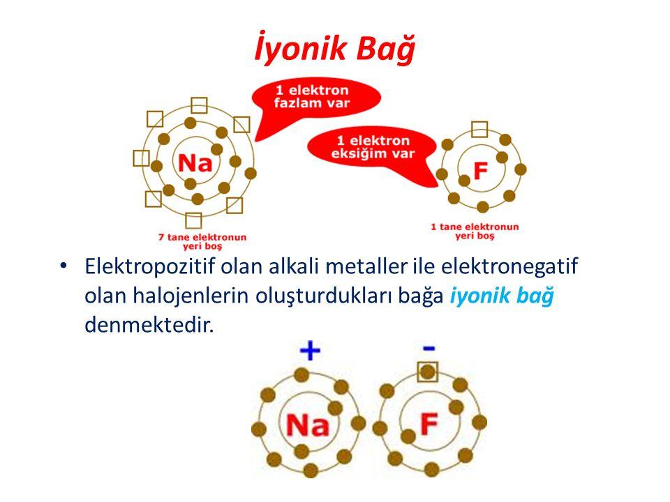 Elektropozitif olan alkali metaller ile elektronegatif olan halojenlerin oluşturdukları bağa iyonik bağ denmektedir. İyonik Bağ