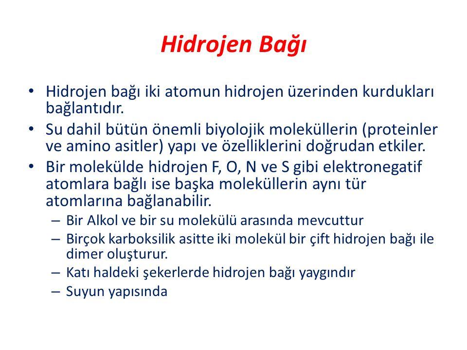 Hidrojen Bağı Hidrojen bağı iki atomun hidrojen üzerinden kurdukları bağlantıdır. Su dahil bütün önemli biyolojik moleküllerin (proteinler ve amino as