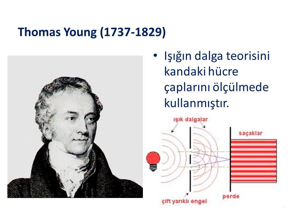 Thomas Young (1737-1829) Işığın dalga teorisini kandaki hücre çaplarını ölçülmede kullanmıştır.