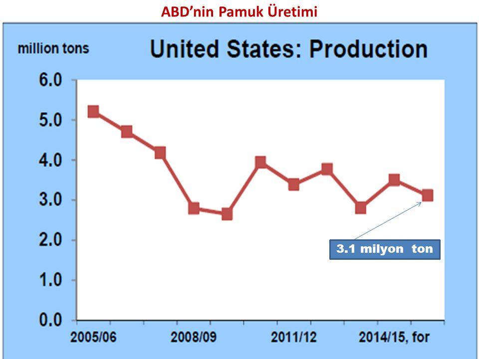 ABD'nin Pamuk Üretimi 3.1 milyon ton