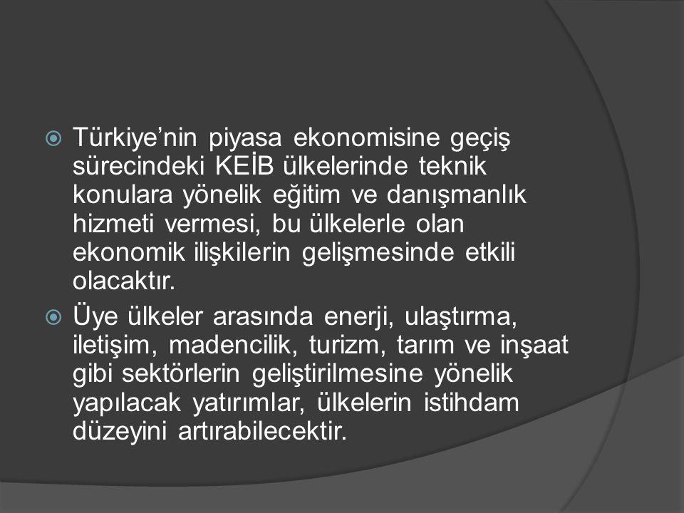  Türkiye'nin piyasa ekonomisine geçiş sürecindeki KEİB ülkelerinde teknik konulara yönelik eğitim ve danışmanlık hizmeti vermesi, bu ülkelerle olan e