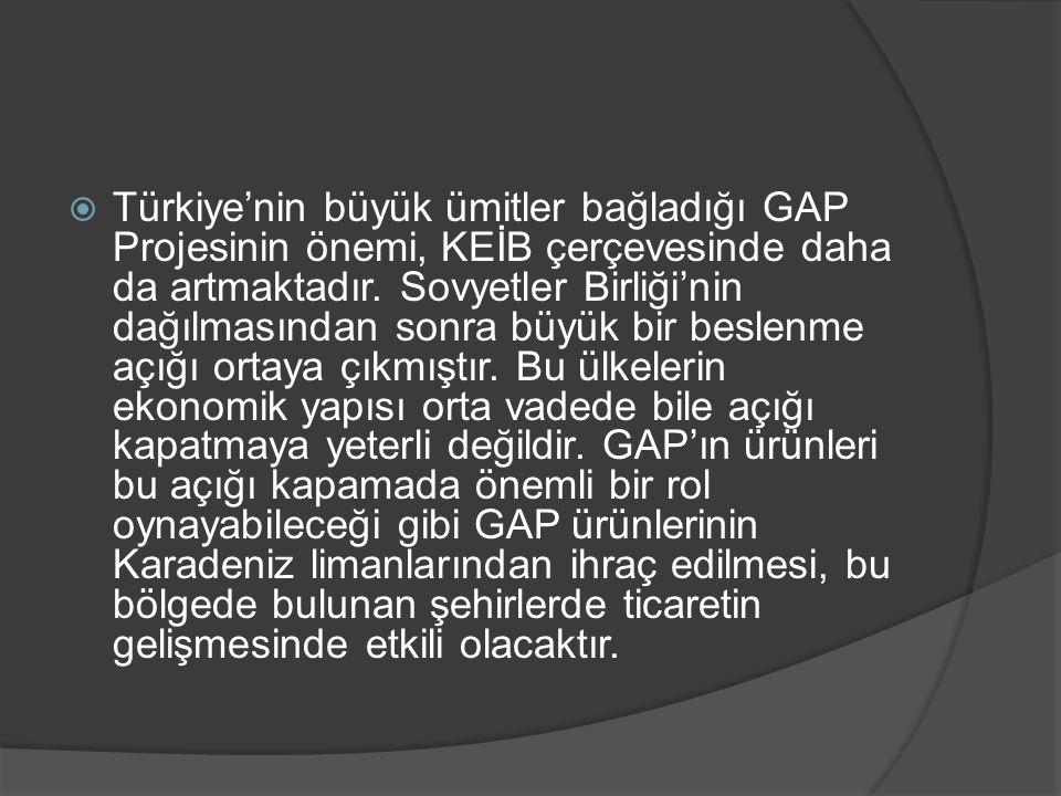  Türkiye'nin büyük ümitler bağladığı GAP Projesinin önemi, KEİB çerçevesinde daha da artmaktadır. Sovyetler Birliği'nin dağılmasından sonra büyük bir