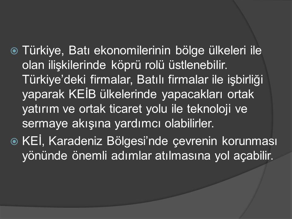  Türkiye, Batı ekonomilerinin bölge ülkeleri ile olan ilişkilerinde köprü rolü üstlenebilir. Türkiye'deki firmalar, Batılı firmalar ile işbirliği yap