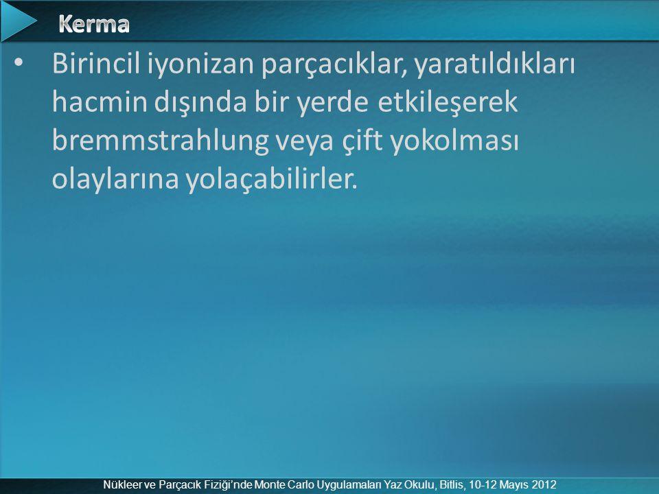 Nükleer ve Parçacık Fiziği'nde Monte Carlo Uygulamaları Yaz Okulu, Bitlis, 10-12 Mayıs 2012 Birincil iyonizan parçacıklar, yaratıldıkları hacmin dışın