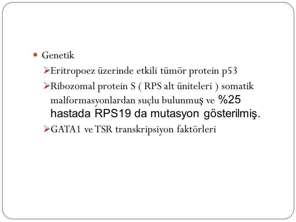 Genetik  Eritropoez üzerinde etkili tümör protein p53  Ribozomal protein S ( RPS alt üniteleri ) somatik malformasyonlardan suçlu bulunmu ş ve %25 hastada RPS19 da mutasyon gösterilmiş.