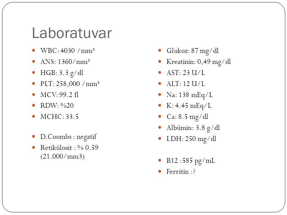 Laboratuvar WBC: 4030 /mm³ ANS: 1360/mm³ HGB: 3.3 g/dl PLT: 258,000 /mm³ MCV: 99.2 fl RDW: %20 MCHC: 33.5 D.Coombs : negatif Retikülosit : % 0.59 (21.000/mm3) Glukoz: 87 mg/dl Kreatinin: 0,49 mg/dl AST: 23 U/L ALT: 12 U/L Na: 138 mEq/L K: 4.45 mEq/L Ca: 8.5 mg/dl Albümin: 3.8 g/dl LDH: 250 mg/dl B12 :585 pg/mL Ferritin :?