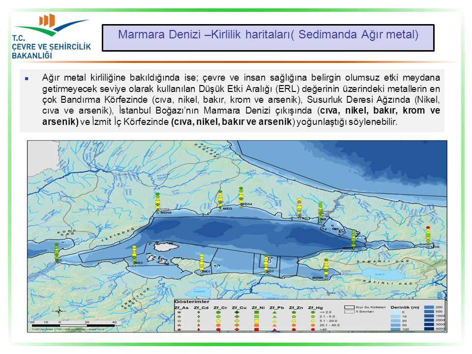 Marmara Denizi –Kirlilik haritaları( Sedimanda Ağır metal) Ağır metal kirliliğine bakıldığında ise; çevre ve insan sağlığına belirgin olumsuz etki mey