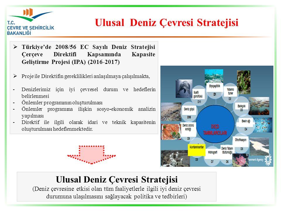  Türkiye'de 2008/56 EC Sayılı Deniz Stratejisi Çerçeve Direktifi Kapsamında Kapasite Geliştirme Projesi (IPA) (2016-2017)  Proje ile Direktifin gere
