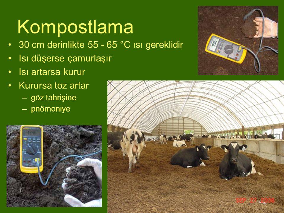 Kompostlama 30 cm derinlikte 55 - 65 °C ısı gereklidir Isı düşerse çamurlaşır Isı artarsa kurur Kurursa toz artar –göz tahrişine –pnömoniye