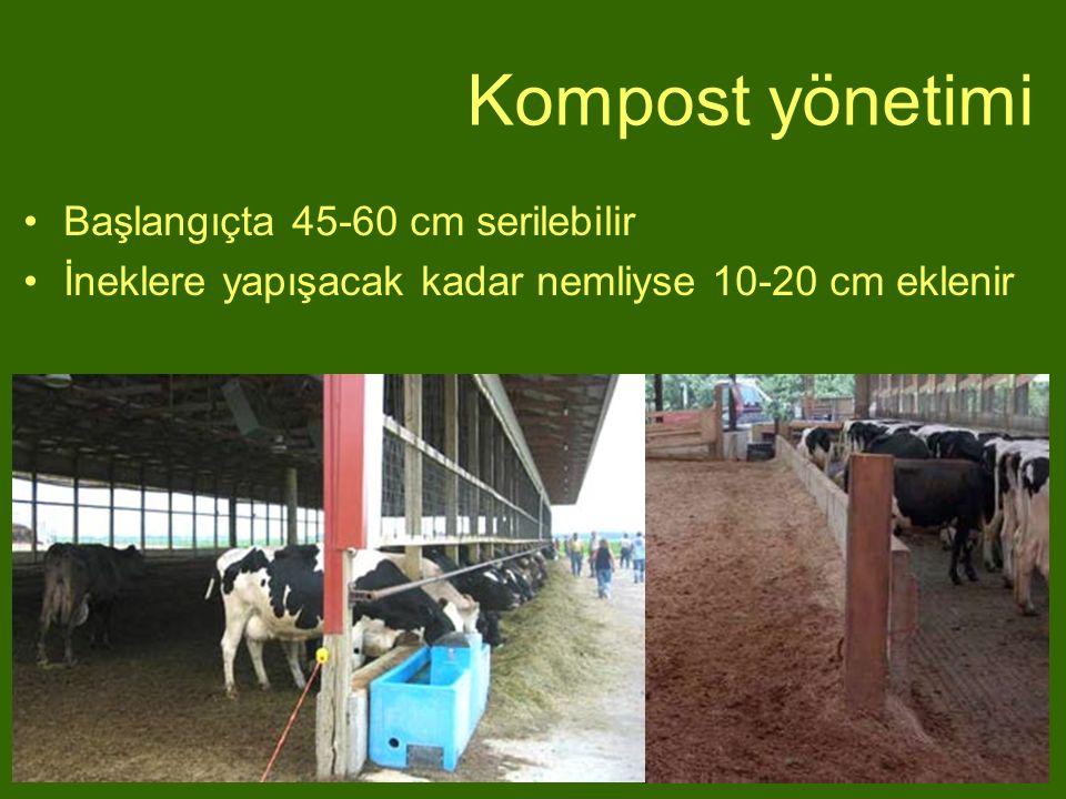 Kompost yönetimi Başlangıçta 45-60 cm serilebilir İneklere yapışacak kadar nemliyse 10-20 cm eklenir