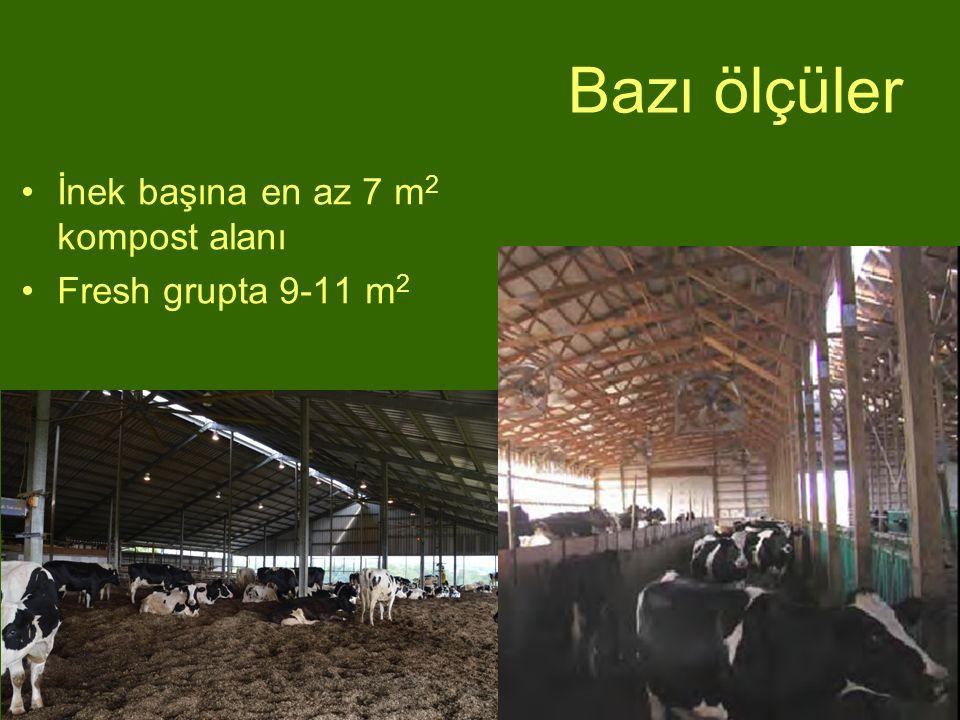 Bazı ölçüler İnek başına en az 7 m 2 kompost alanı Fresh grupta 9-11 m 2
