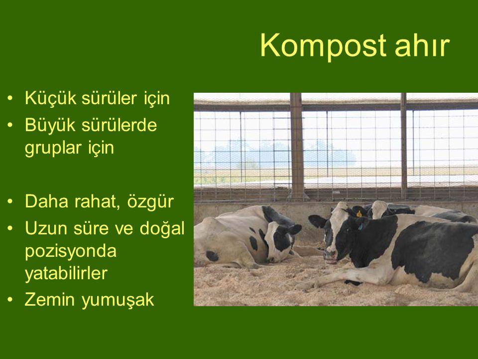 Kompost ahır Küçük sürüler için Büyük sürülerde gruplar için Daha rahat, özgür Uzun süre ve doğal pozisyonda yatabilirler Zemin yumuşak