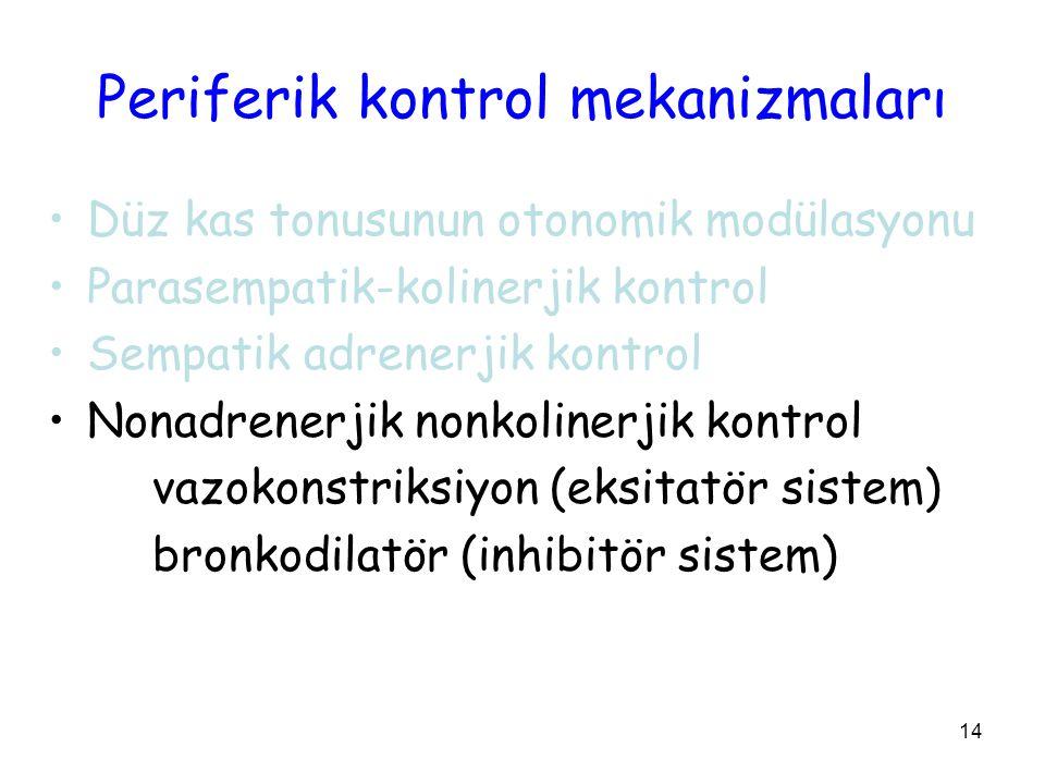 14 Periferik kontrol mekanizmaları Düz kas tonusunun otonomik modülasyonu Parasempatik-kolinerjik kontrol Sempatik adrenerjik kontrol Nonadrenerjik nonkolinerjik kontrol vazokonstriksiyon (eksitatör sistem) bronkodilatör (inhibitör sistem)
