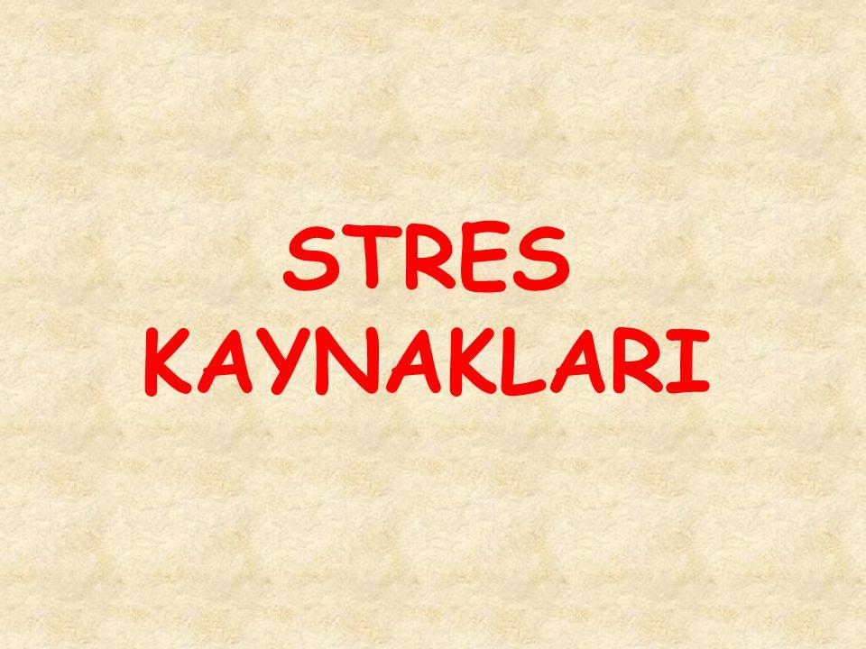 STRES KAYNAKLARI