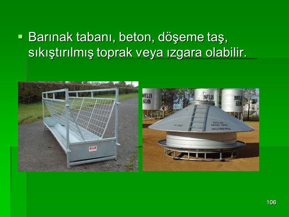  Barınak tabanı, beton, döşeme taş, sıkıştırılmış toprak veya ızgara olabilir. 106