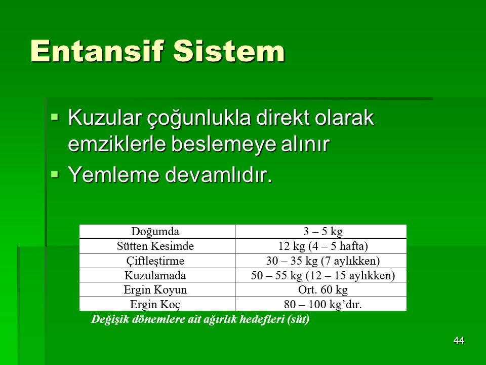 44 Entansif Sistem  Kuzular çoğunlukla direkt olarak emziklerle beslemeye alınır  Yemleme devamlıdır. Değişik dönemlere ait ağırlık hedefleri (süt)