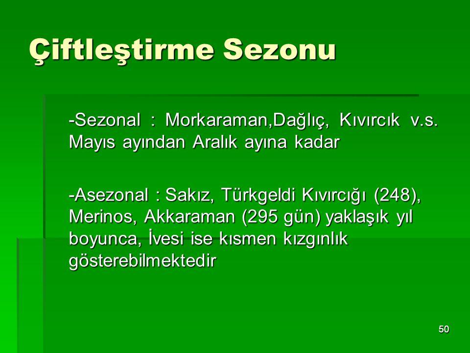 50 Çiftleştirme Sezonu -Sezonal : Morkaraman,Dağlıç, Kıvırcık v.s. Mayıs ayından Aralık ayına kadar -Asezonal : Sakız, Türkgeldi Kıvırcığı (248), Meri