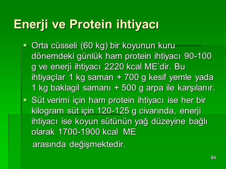 Enerji ve Protein ihtiyacı  Orta cüsseli (60 kg) bir koyunun kuru dönemdeki günlük ham protein ihtiyacı 90-100 g ve enerji ihtiyacı 2220 kcal ME'dir.